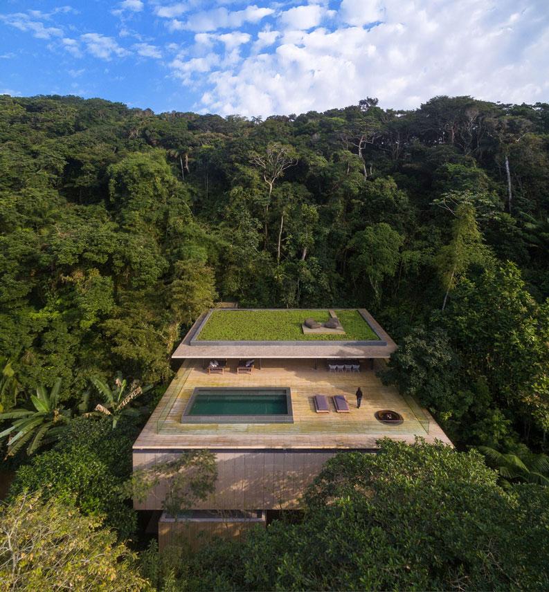 Casa Jungle